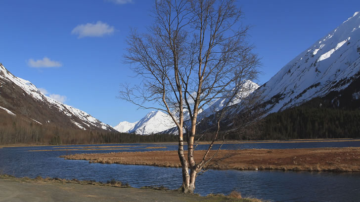 Turn Lake Kenai Peninsula Alaska